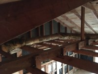 Can I remove ceiling joists without risking the integrity ...