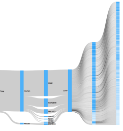 d3 sankey diagram from csv rendering incorrectly [ 1570 x 1532 Pixel ]
