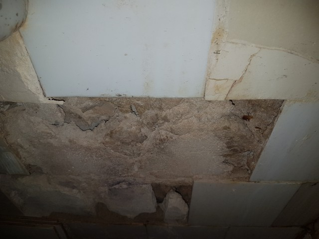 Does this wall tiles mortar contain asbestos  Home