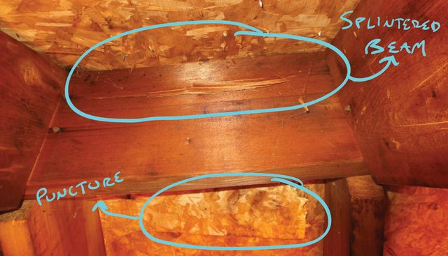 3 way insurance 2002 dodge durango radio wiring diagram wood - what kind of repairs are prudent for a ridge board damaged by falling tree? home ...