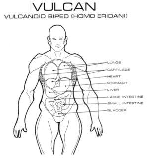 Bestseller: Body Trek Anatomy Physiology Answers