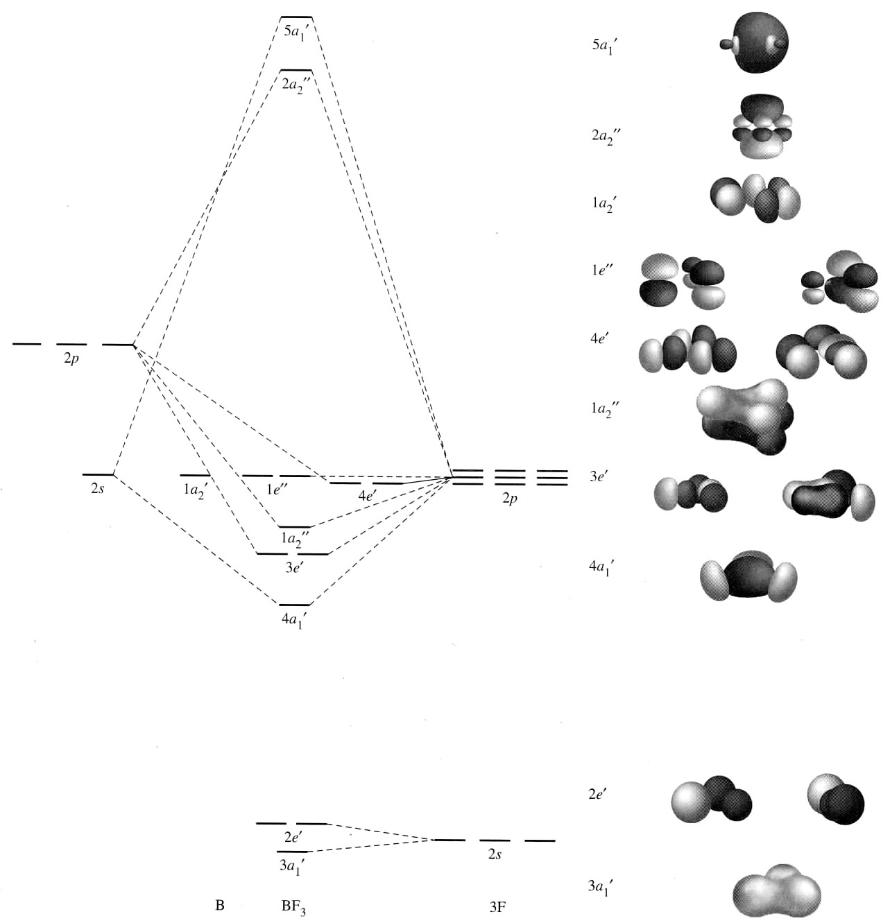 nf3 lewis diagram
