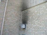 pest - How can I locate the entrance of a wasp nest, and ...