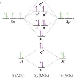 the molecular orbital energy level diagram of sx2 is given below enter image description here [ 1500 x 945 Pixel ]