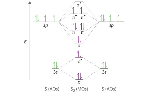 small resolution of the molecular orbital energy level diagram of sx2 is given below enter image description here