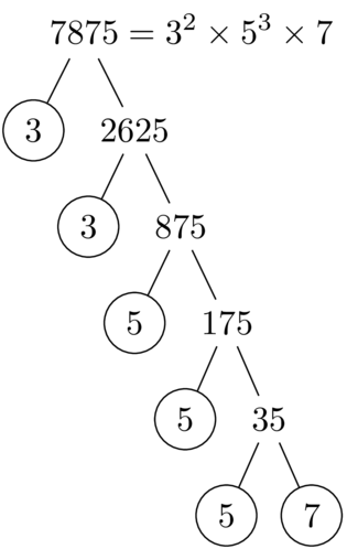 How to automatically draw tree diagram of prime