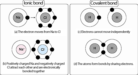 Why are bonds ionic when the electronegativity difference