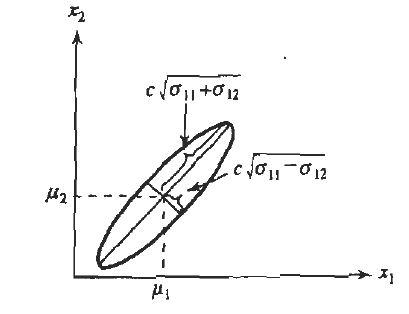 https://wiringdiagram herokuapp com/post/95-bmw-325i-serpentine