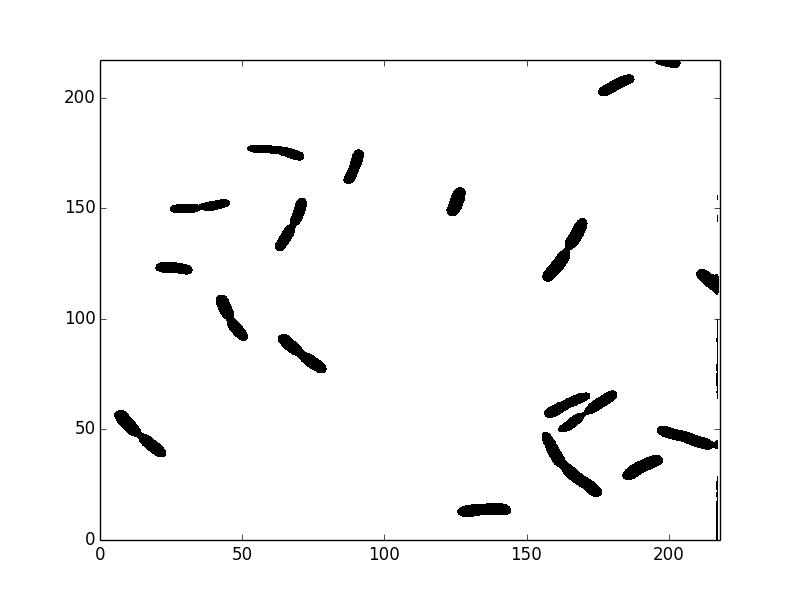 microscopy image segmentation: bacteria segmentation with