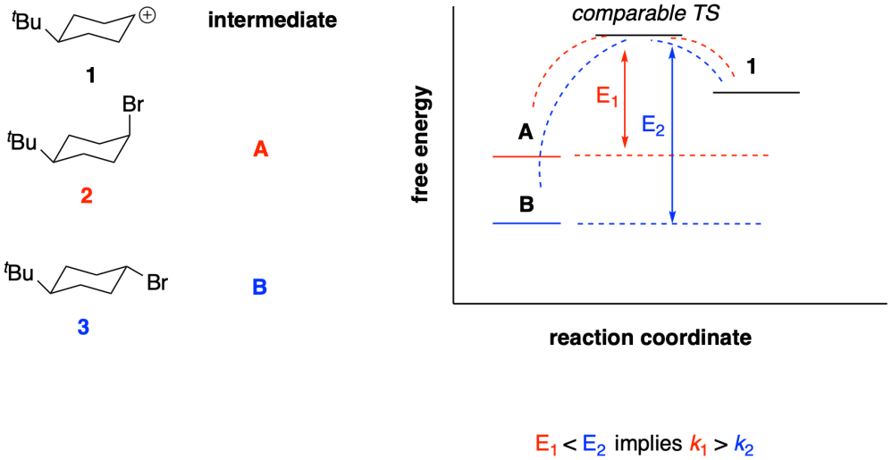 medium resolution of proposed plausible potential energy diagram