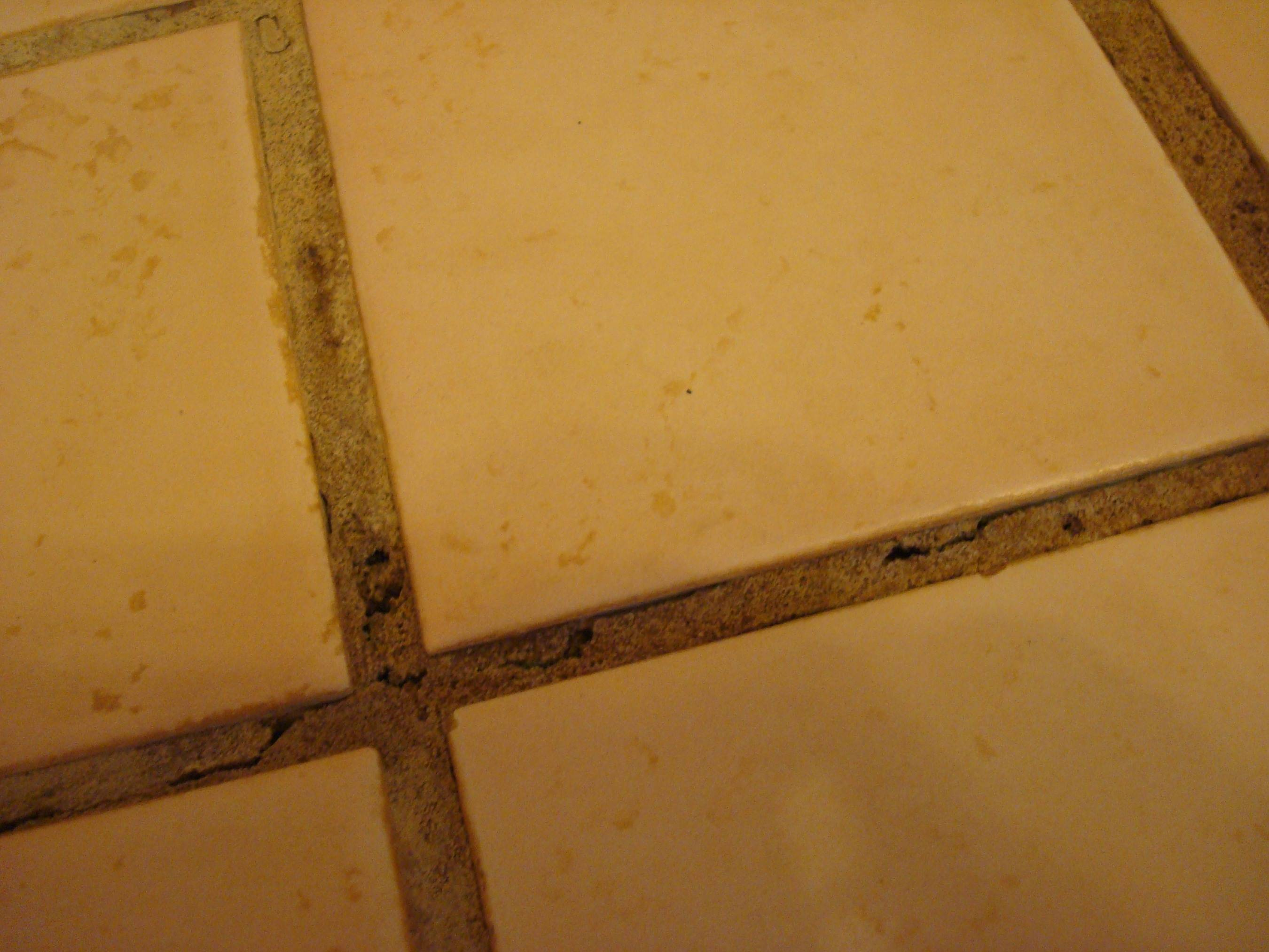 Bathroom Grout Bathroom What Is The Best Way To Repair And Prevent Cracking