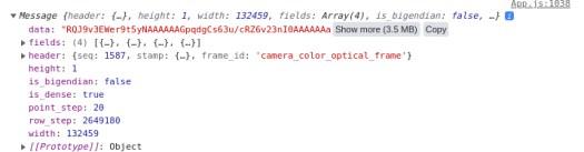 screenshot of pointcloud console log