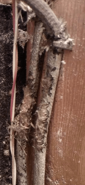 Electrical What Should I Do About Old Cables That Have