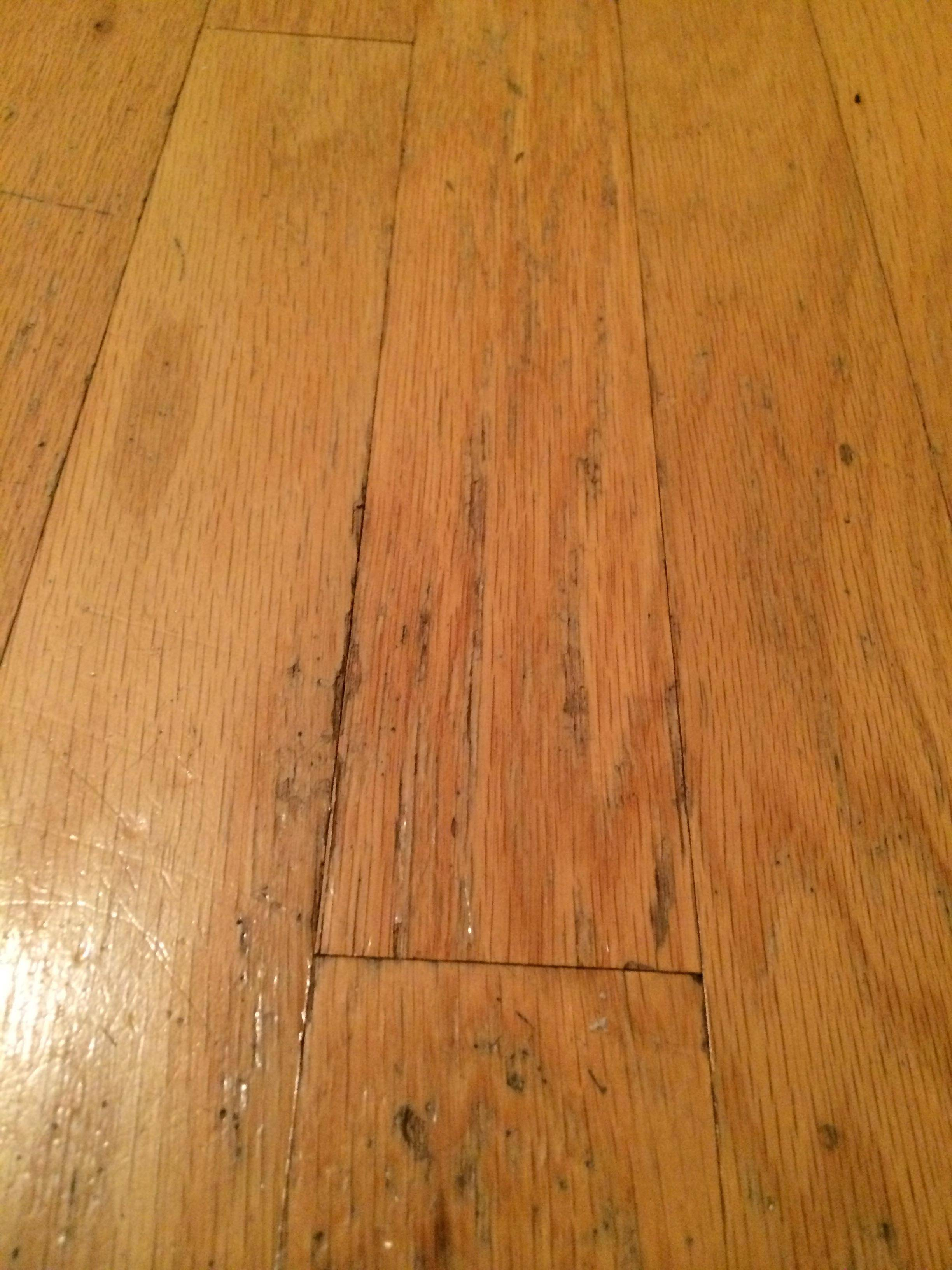 flooring  How can I repair the damage to this wood floor