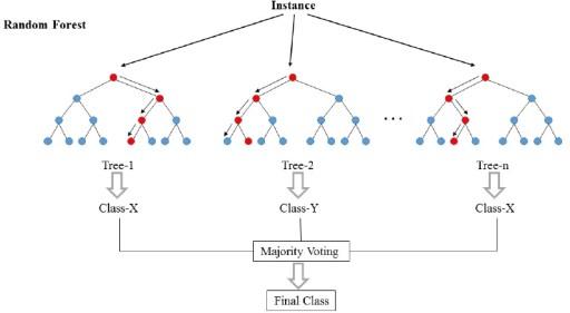 Random Forest, Machine Learning, ML