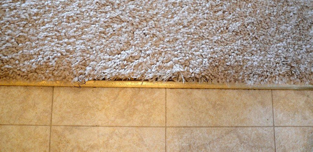 to fix frayed carpet at tile transition