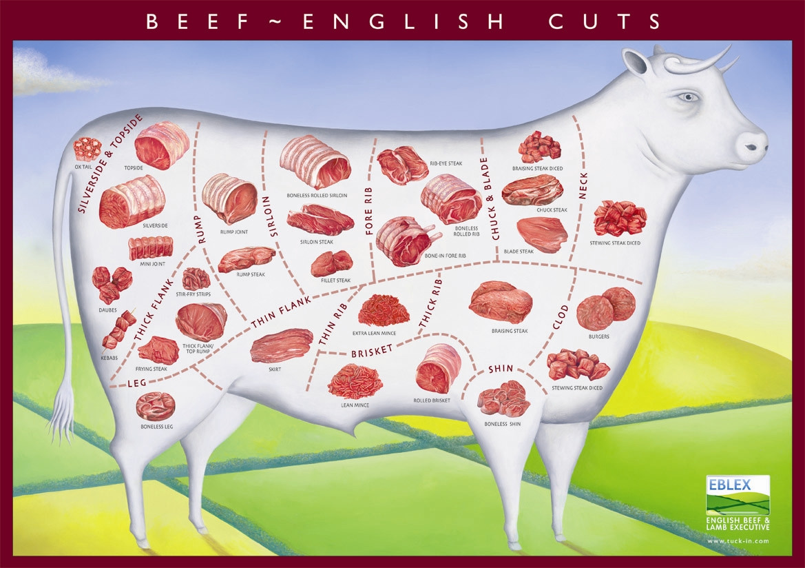 beef cow cut diagram trailer wiring 6 way plug what is the difference between french and british cuts of