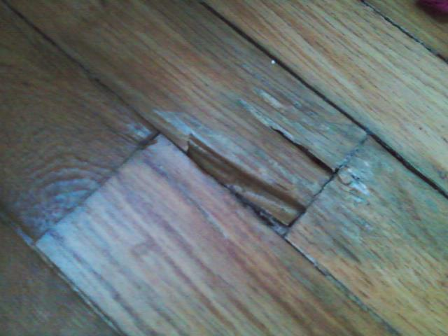 Wood Why Are Some Of The Boards In My Hardwood Floors