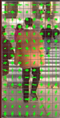Opencv HOG Descriptor For Pedestrian Detection Training