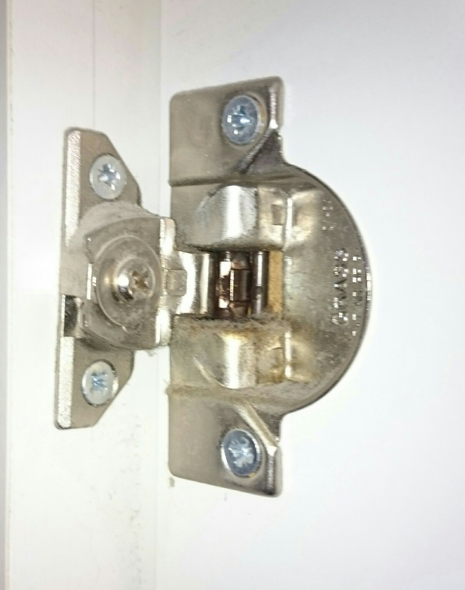 kitchen cabinets hinges replacement replacing sink grass cabinet 830 15 matttroy