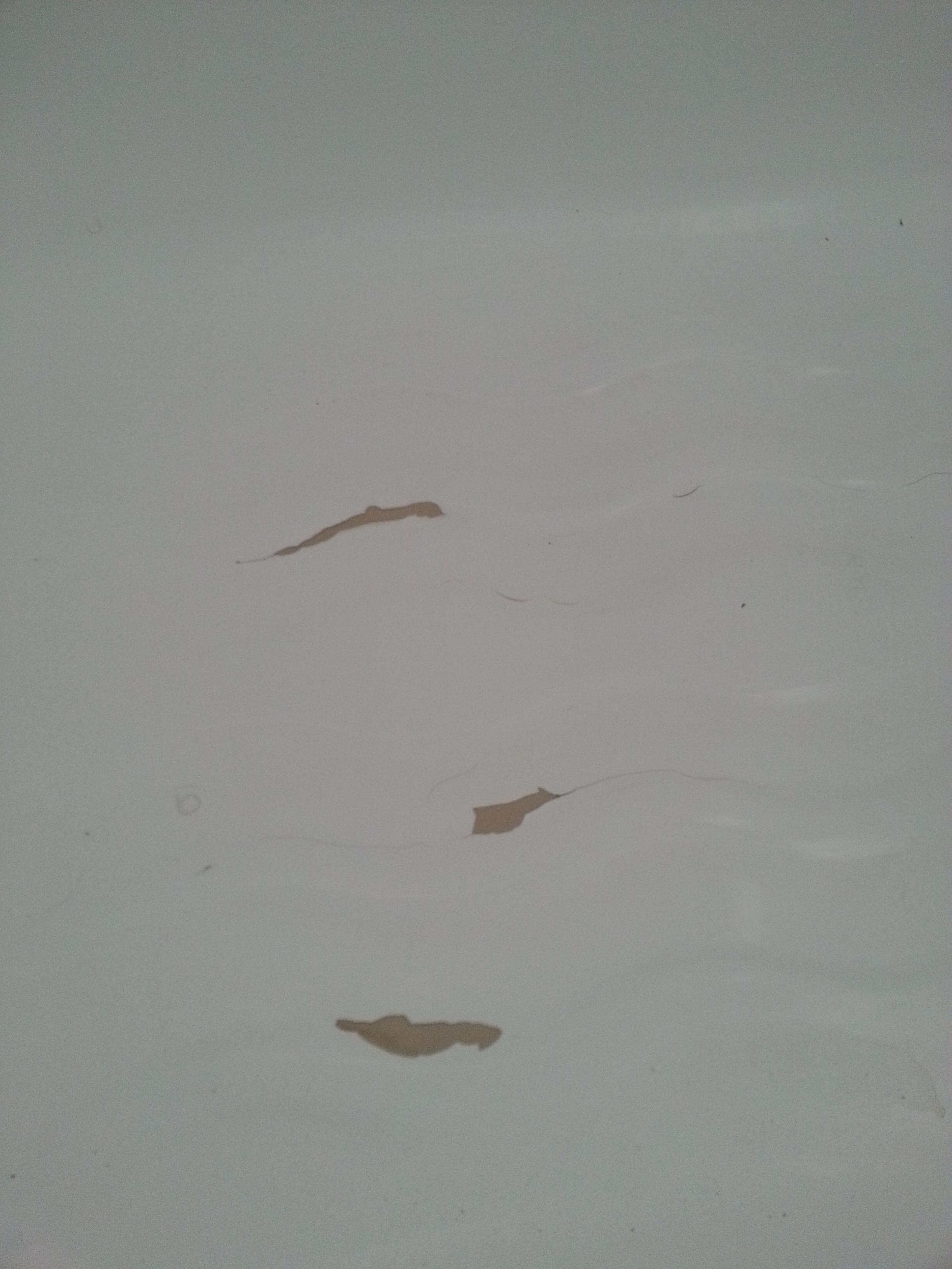 How Can I Fix Floor Cracks In Bathtub Enamel Coating Home Improvement Stack Exchange