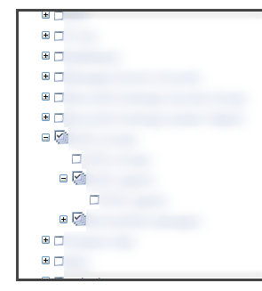SharePoint 2013 Permission for AD Group not working