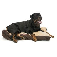 "Aussie Naturals Perth Dog Bed - 3x46x28"", Large - Save 40%"