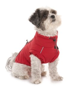 Spot on dog red adventure coat large in also save rh sierratradingpost