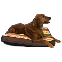 "Waverly Fiesta Panama Dog Bed - 4x36x27"" - Save 70%"