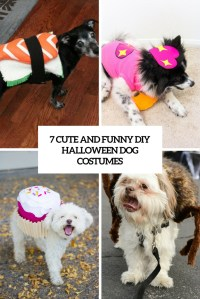7 Funny And Cute DIY Halloween Dog Costumes