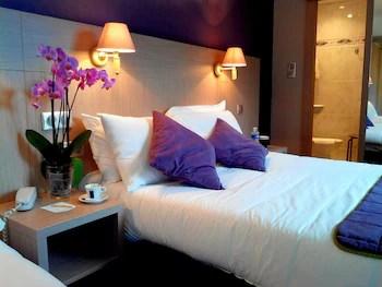 Quality Hotel Christina Lourdes Lourdes France