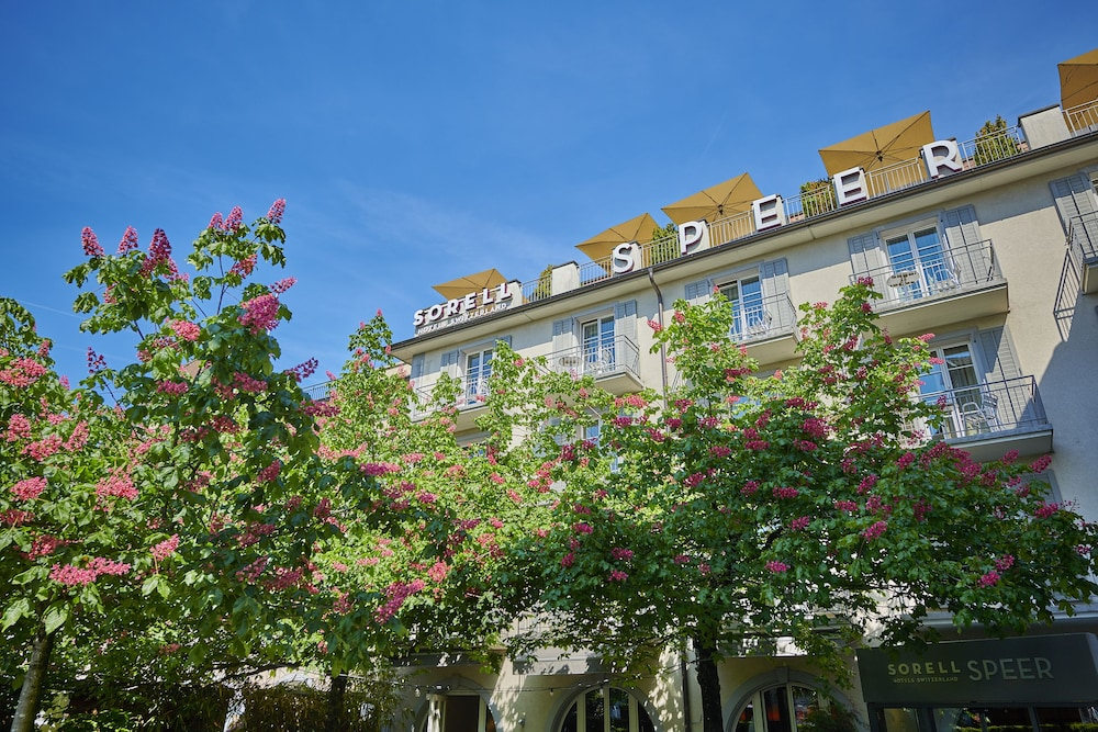 Sorell Hotel Speer Rapperswil Jona Sg Ch Reservations Com
