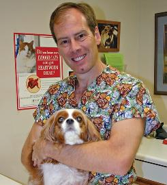 """Veterinarian Shawn Messonnier, with Rita, says that  """"a matter of minutes, five or 10 minutes,"""" is all it takes on a hot day for a dog to wind up organ-damaged or dead."""