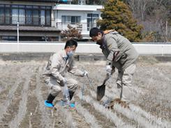 Fukushima Prefectural officers collect soil at a rice paddy in Koorimachi, Japan, to check if it is contaminated by radioactive materials.