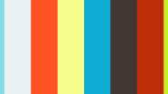 Limestone Veterinary Clinic