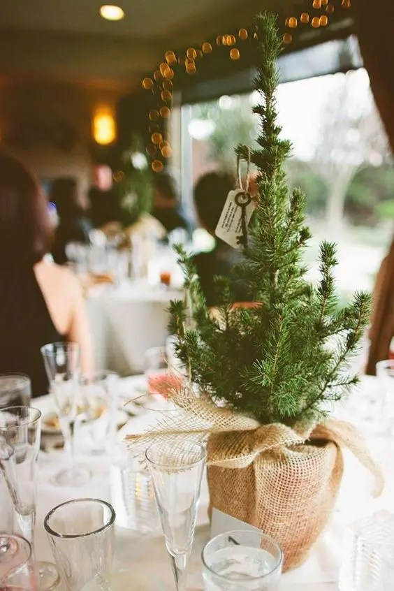 Use Small Pine Trees As Simple Rustic Centerpieces Wrapped In Heavy Burlap