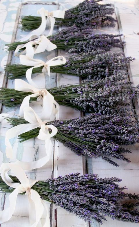 elegant lavender bridesmaid bouquets with ivory ribbon bows are the cutest