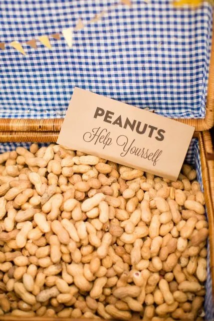 peanuts are healthy, just keep in mind that many people may be allergic to them and offer something else