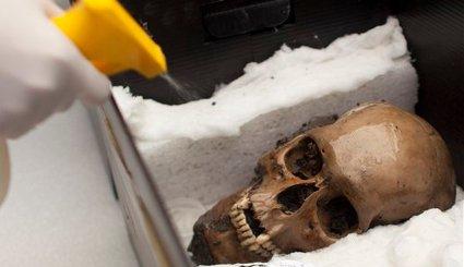Niezwykłe znalezisko w azteckiej świątyni. To cmentarzysko czaszek