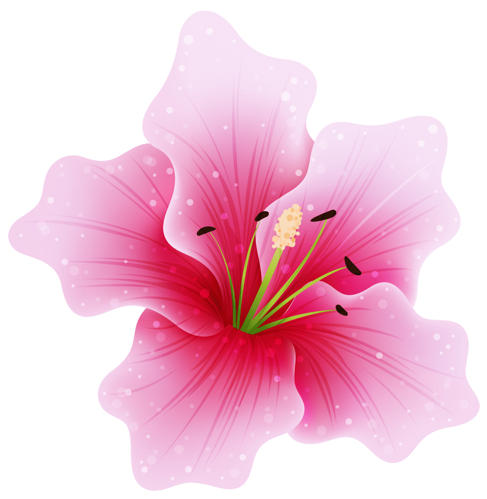 medium resolution of anime flower png large pink clipart gallery