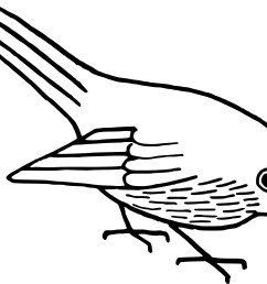 bird clip art line drawing at getdrawings com free [ 3455 x 2821 Pixel ]