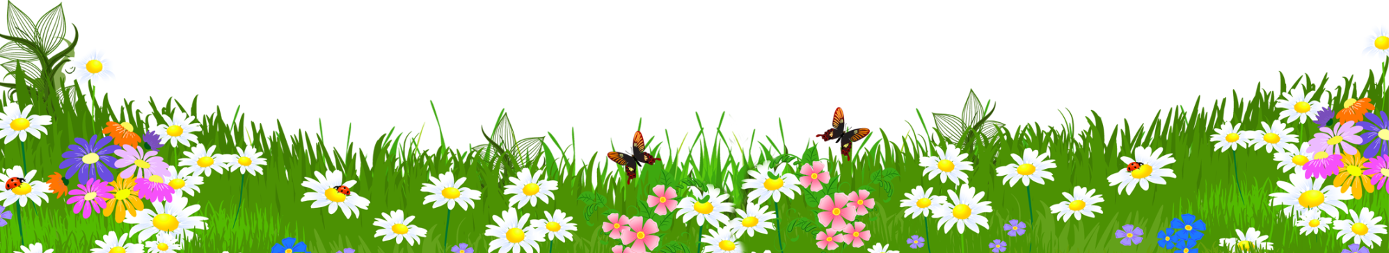 hight resolution of daisy clipart landscape grass ground with flowers