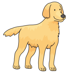 dogs vector chesapeake bay retriever dog golden icons png [ 2400 x 2400 Pixel ]