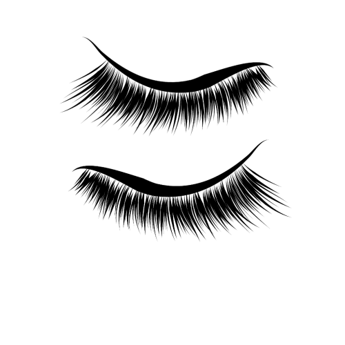 small resolution of eyelash clipart dark brown eye clip transparent library