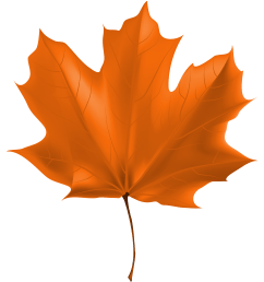 fall leaf png beautiful autumn clipart image [ 3274 x 3637 Pixel ]