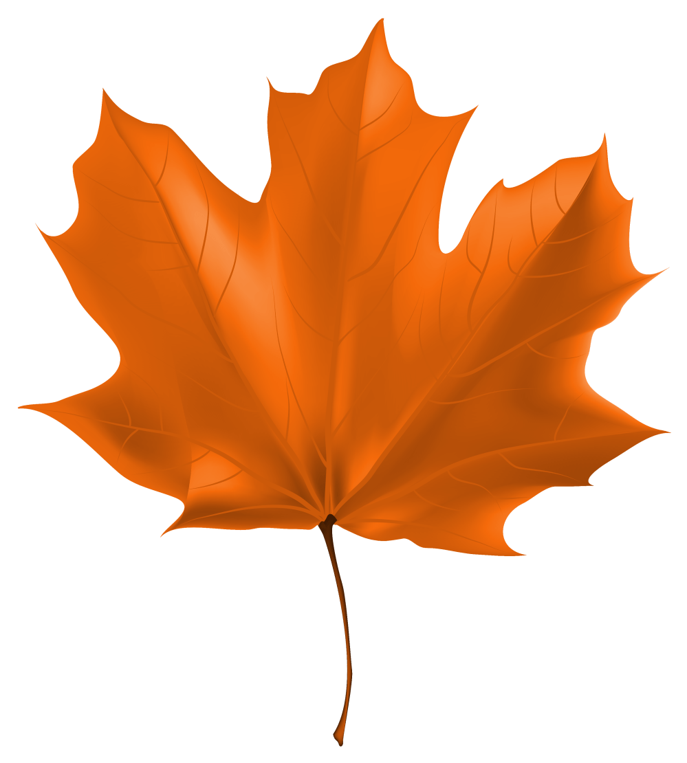medium resolution of fall leaf png beautiful autumn clipart image