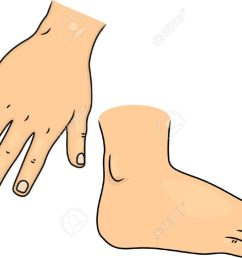 cartoon clipart foot pencil and in color free hands feet 1300 977 of  [ 1024 x 770 Pixel ]