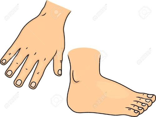 small resolution of cartoon clipart foot pencil and in color free hands feet 1300 977 of
