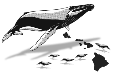 whale clipart drawing humpback whaletrips right watching southern infographic transparent mammal january easy webstockreview