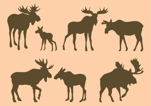 small resolution of moose silhouette clip art google search graphics pinterest
